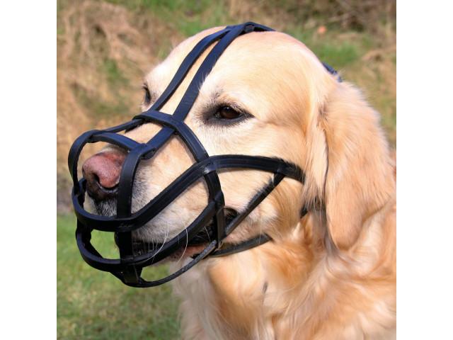 Botnita Piele Neagra XL 35-29 Newfoundland Dog 1878