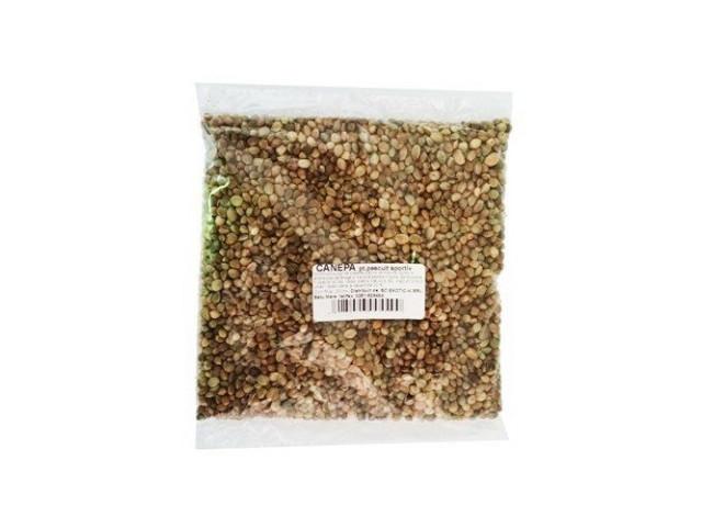 Exo - Canepa 200 ml (Canabis Sativa)