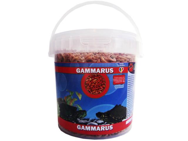 Exo Gammarus 1000 ml Galetusa