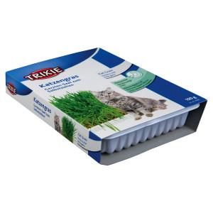 Castron Plastic cu Seminte de Iarba 100 g 4235