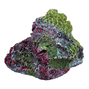 Decor Stanca cu Model Coral 8 cm 87823