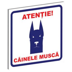 "Pliant Pvc ""Cainele Musca"" Albastru-Rosu 15x15 cm (Tip 1)"