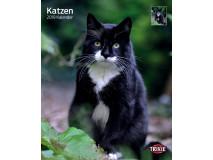 Calendar Kittens 2016 12592